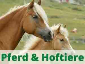 Pferd und Hoftiere Heimtierdepot Pferdebedarf Hoftierbedarf