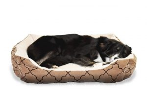 Hundeschlafplatz Heimtierdepot