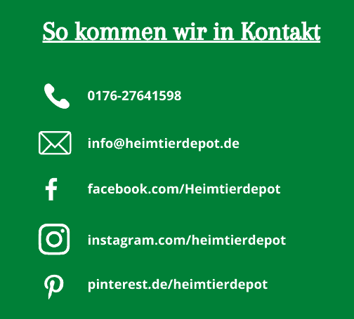 Kontakt zu uns